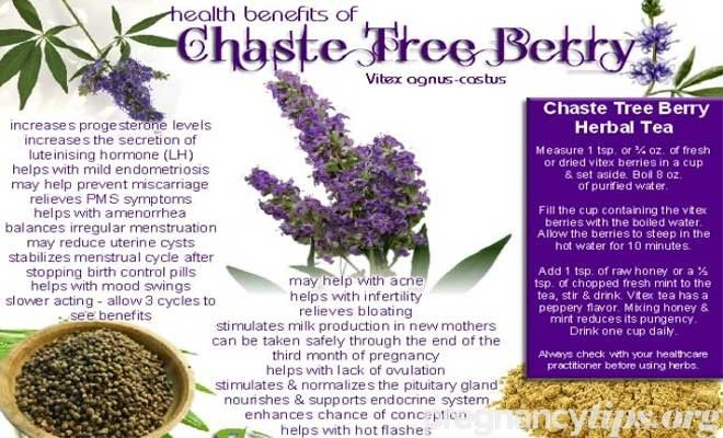 150e9113893b1ef7cf582c04dbf6af82 - How Long Should I Take Vitex To Get Pregnant