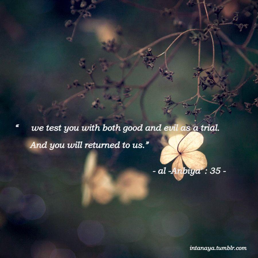 Quotes For > Quran Quotes Tumblr | Quran quotes | Quran quotes