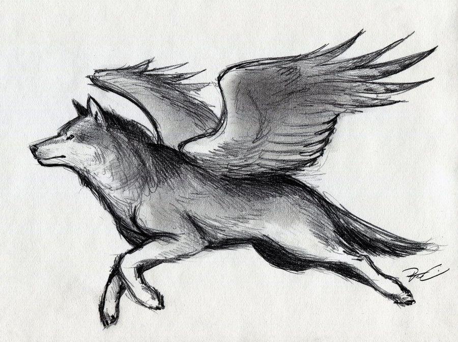 Black Winged Wolf Draw...