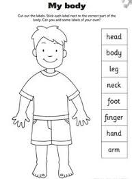 Image result for worksheet for parts of your head for