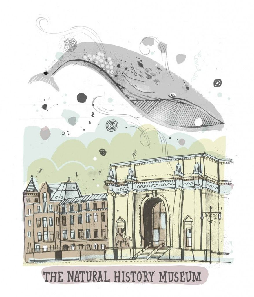 The Natural History Museum - An Illustrated Tour of All the Buildings in New York