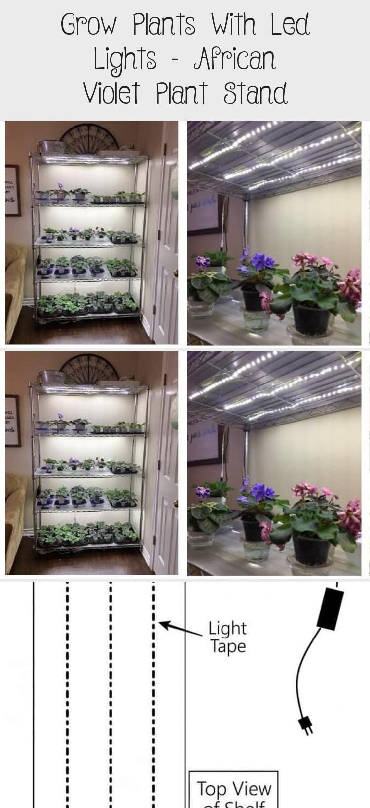 Grow Plants With Led Lights - African Violet Plant Stand ...