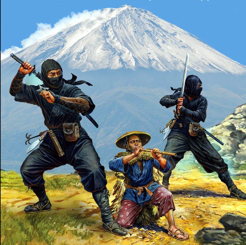 Ninja Warrior Japan
