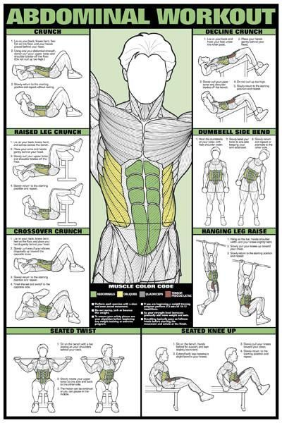 Leg Workout Professional Fitness Gym Wall Chart Poster  Fitnus Corp #fitness #fitnessworkouts