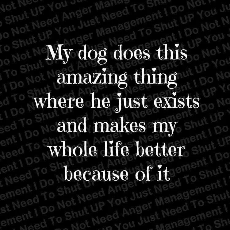 Love my pets...:)