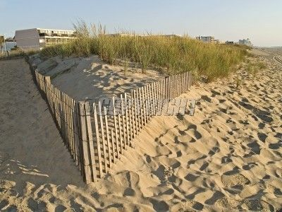 beach-sand-dunes-ocean-city-image.jpg (400×300)