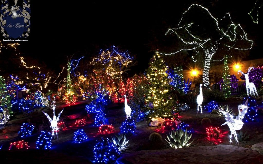 Magnificent ornaments on the Christmas photos from Nevada