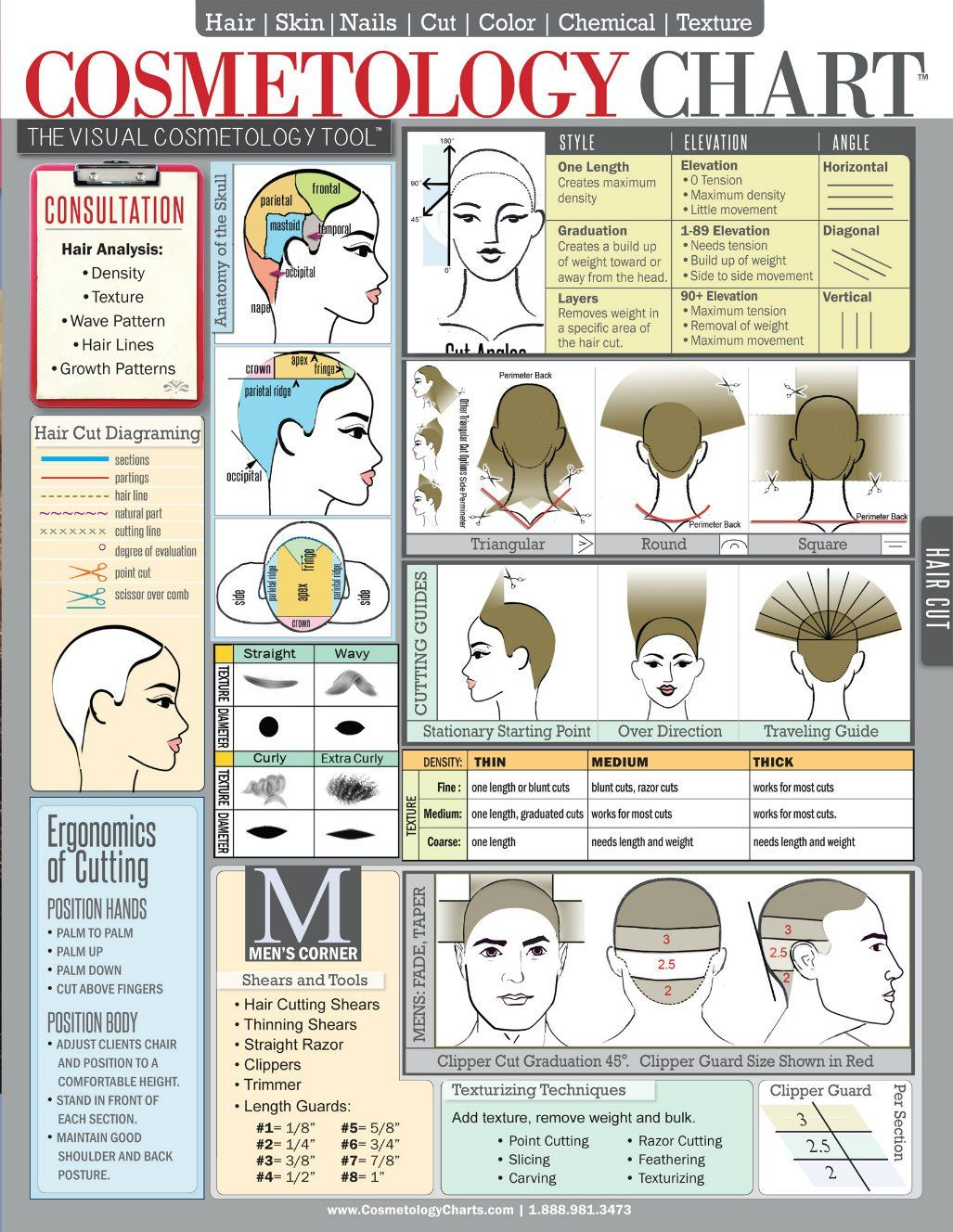 Amazon Cosmetology Chart Amp Cheat Sheet For Hair