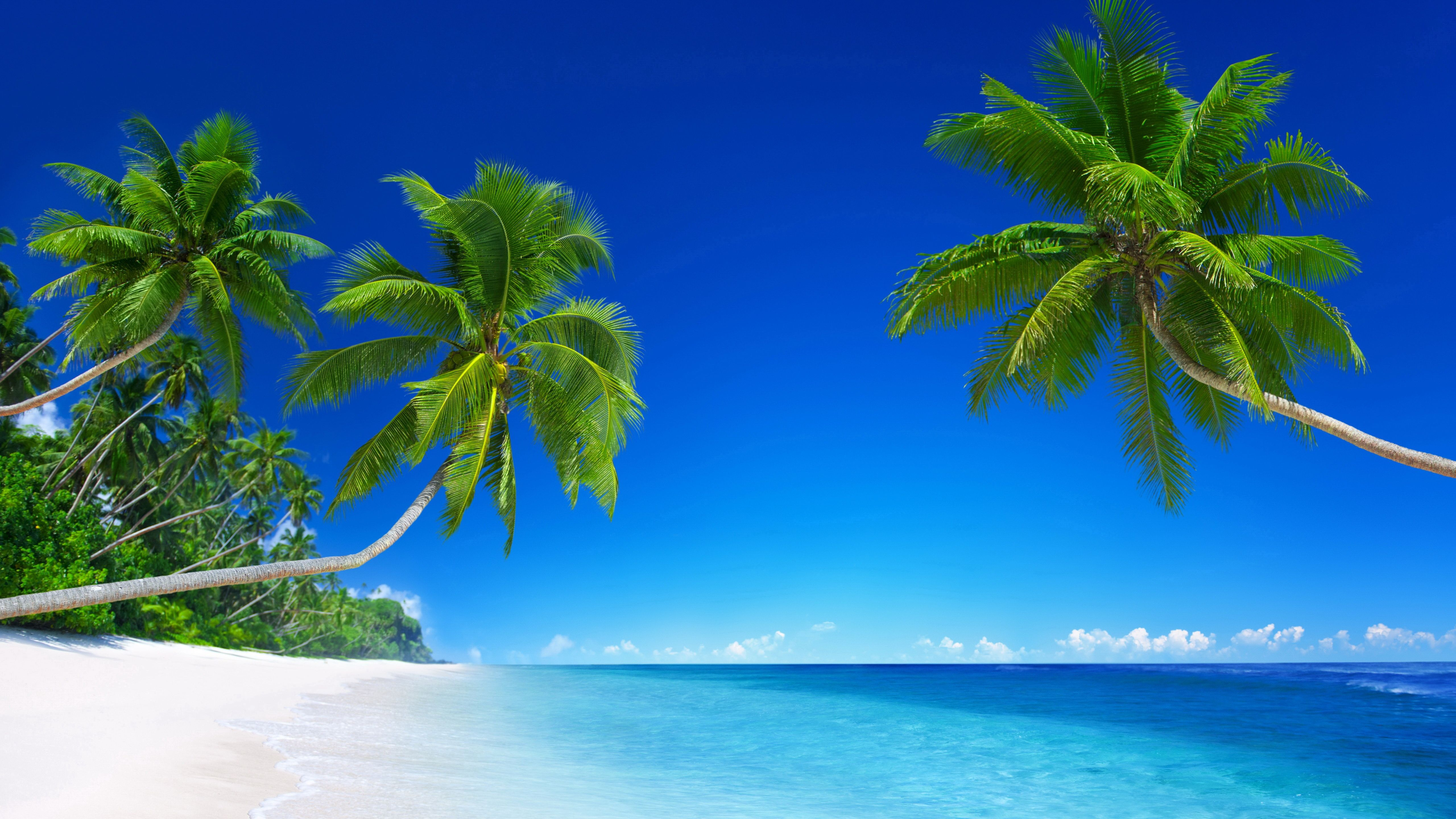 Beach Resort Prepossessing Best Resorts In Florida Keys For Astounding Pet  Friendly And Romantic