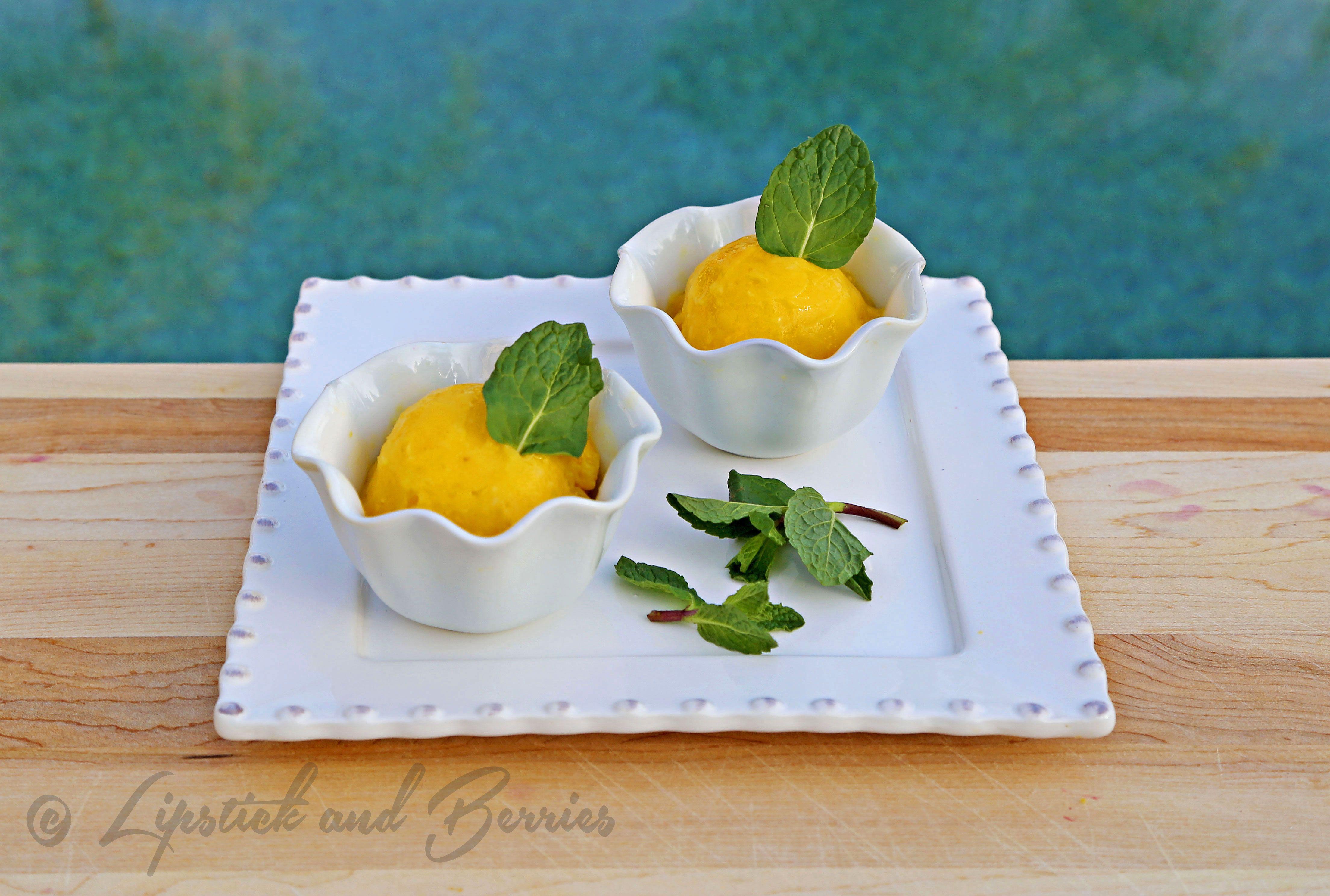 Mango Mint Sorbet Palate Cleanser (low-fat raw vegan)