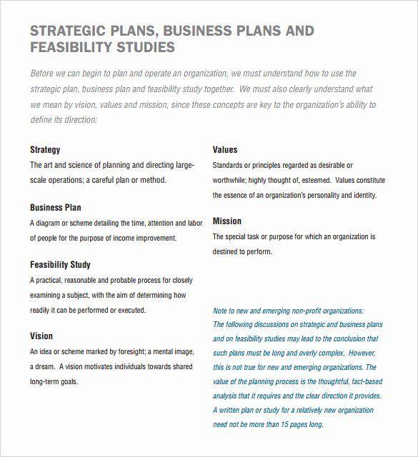 30 Nonprofit Business Plan Template Pdf In 2020 Business Throughout Sample Non Profit Bu Business Plan Template Business Plan Template Free Business Planning