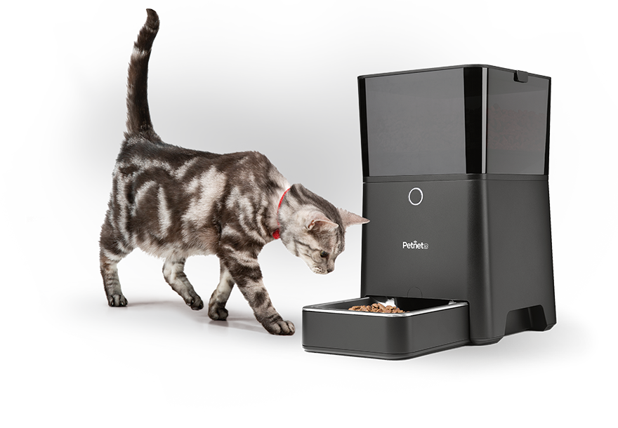 Smart Feeder (With images) Pets, Your pet