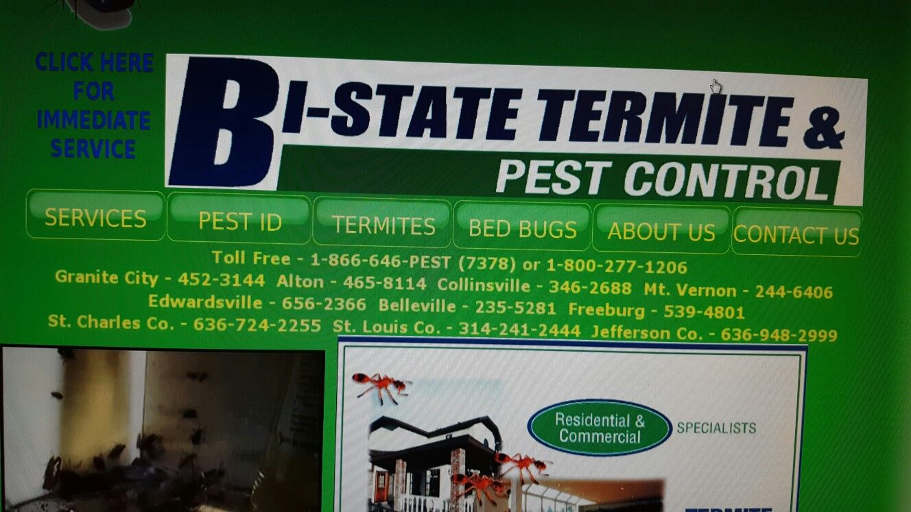 Pin By Melissa Bednarz On 908 Silverview Lane Pest Control