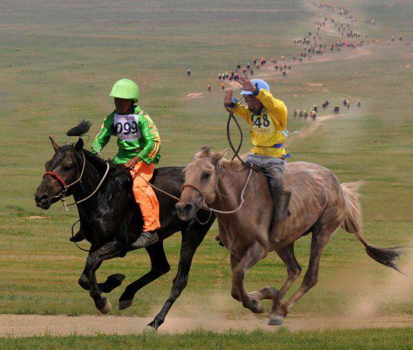 Mongolia (@Mongolia976) | Twitter