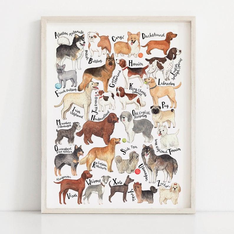 Dog Art Print. Dog Wall Art. Dog poster. Dog breeds Chart