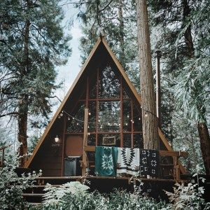 60 small mountain cabin plans with loft best of love the colouring of the facade on this shed roof