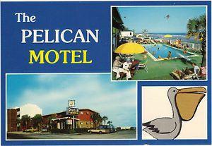 The Pelican Motel 2310 North Ocean Blvd North Myrtle Beach Sc 29582 North Myrtle Beach Myrtle Beach Pelican