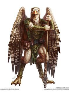 Aarakocra - 5th Edition Monster Manual by christopherburdett on deviantART