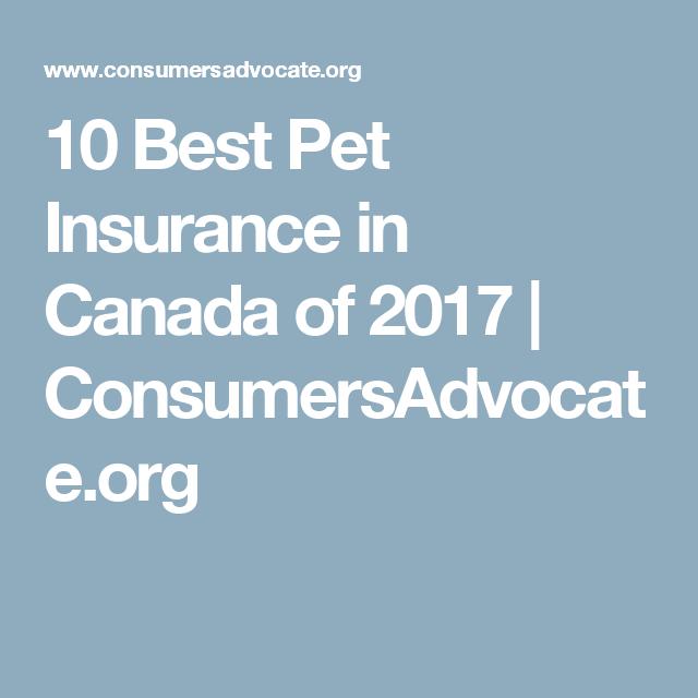 10 Best Pet Insurance in Canada of 2017 ...