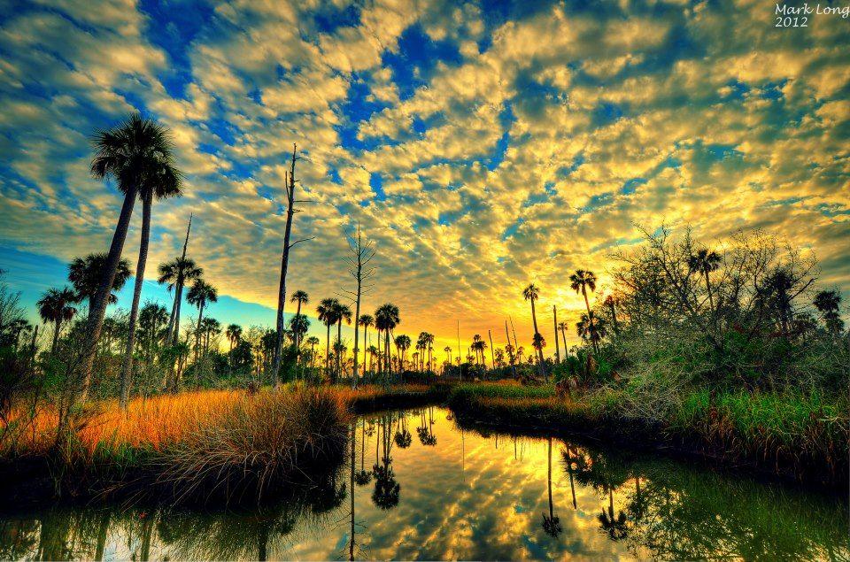Sunset on Florida's nature coast.  Photo by Mark Long