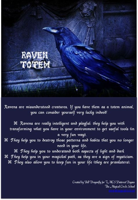 Raven Totem Totem And Spirit Animals Pin Created By Bell