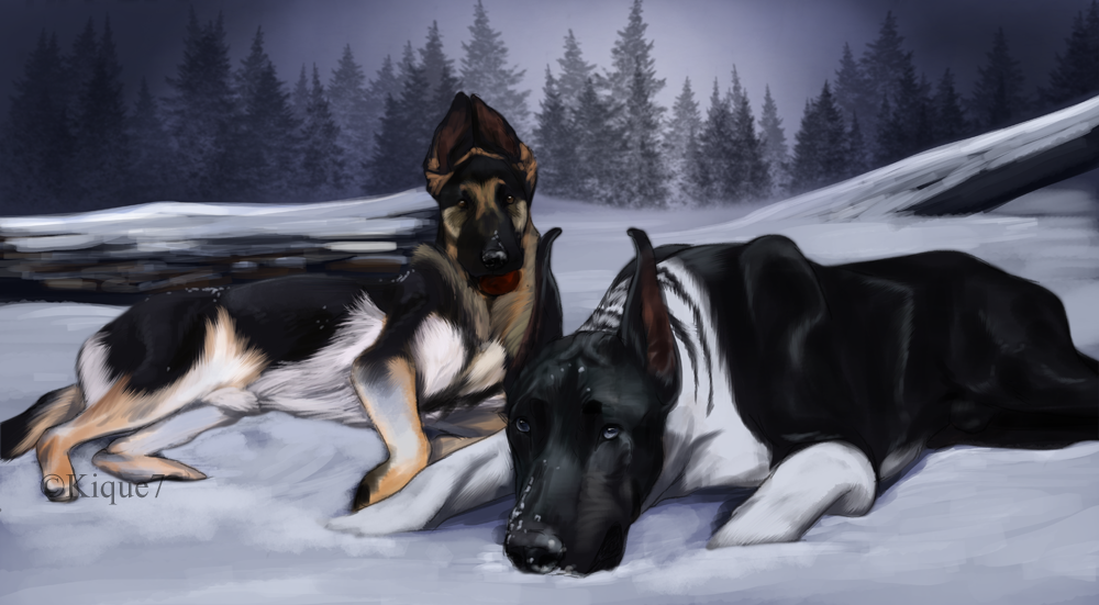 Ice dogs by Kique7 on DeviantArt