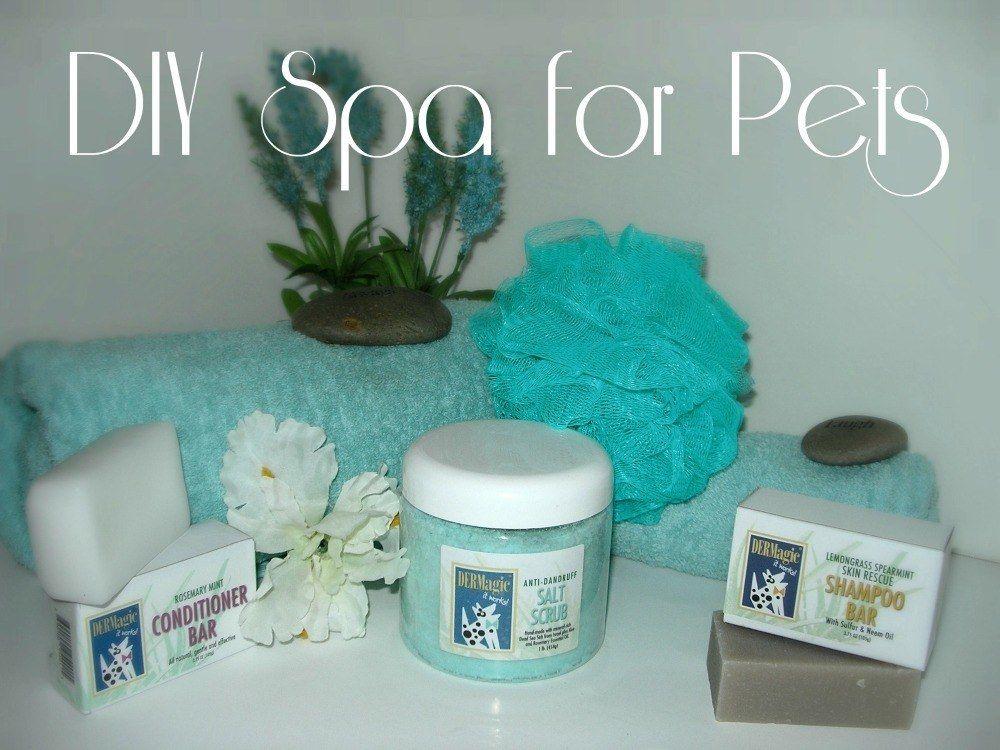 Diy Dog Spa 10 Easy Steps Diy Dog Stuff Dog Spa Diy Dog Shampoo