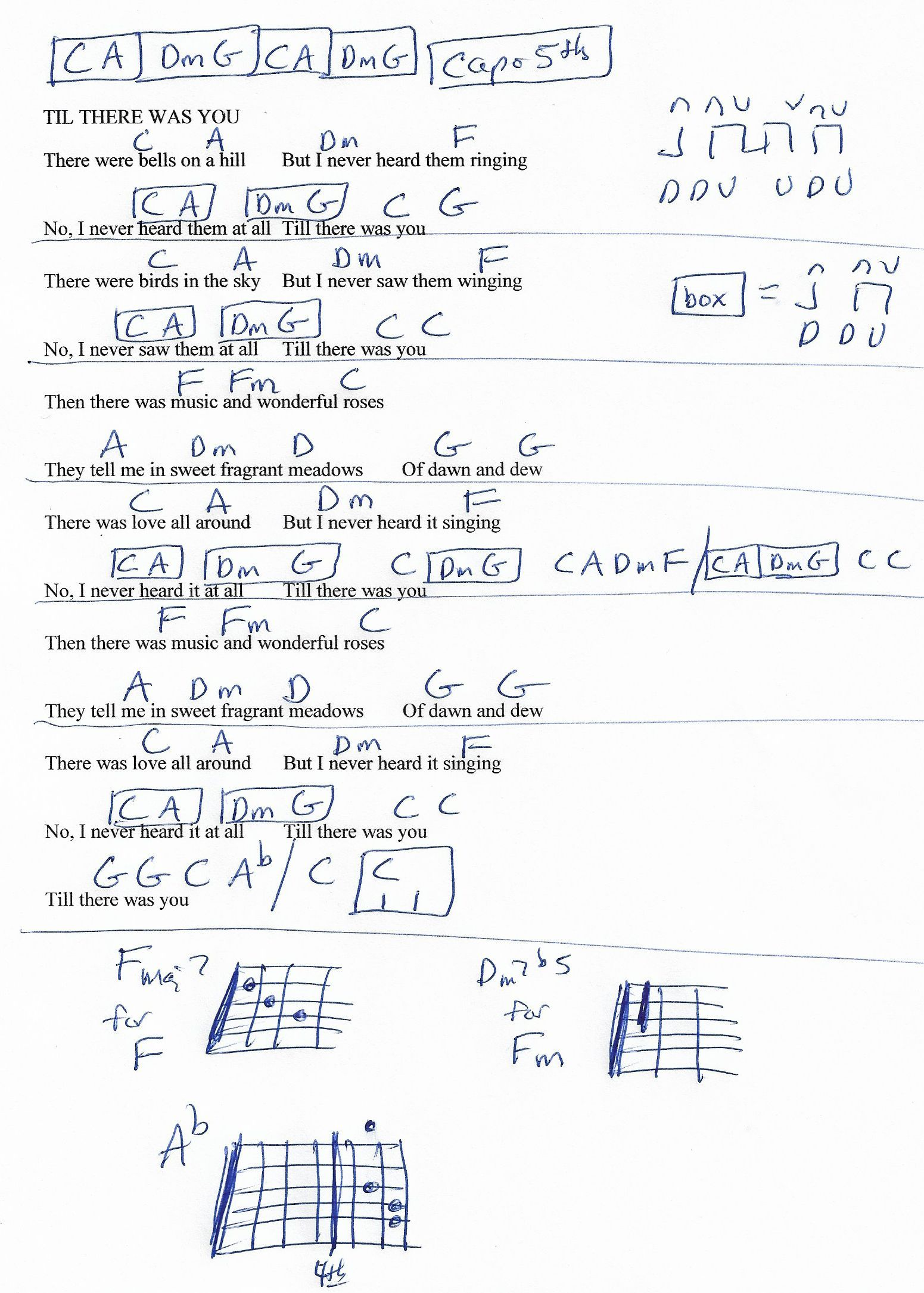 Til There Was You Beatles Guitar Chord Chart Capo 5th Guitar