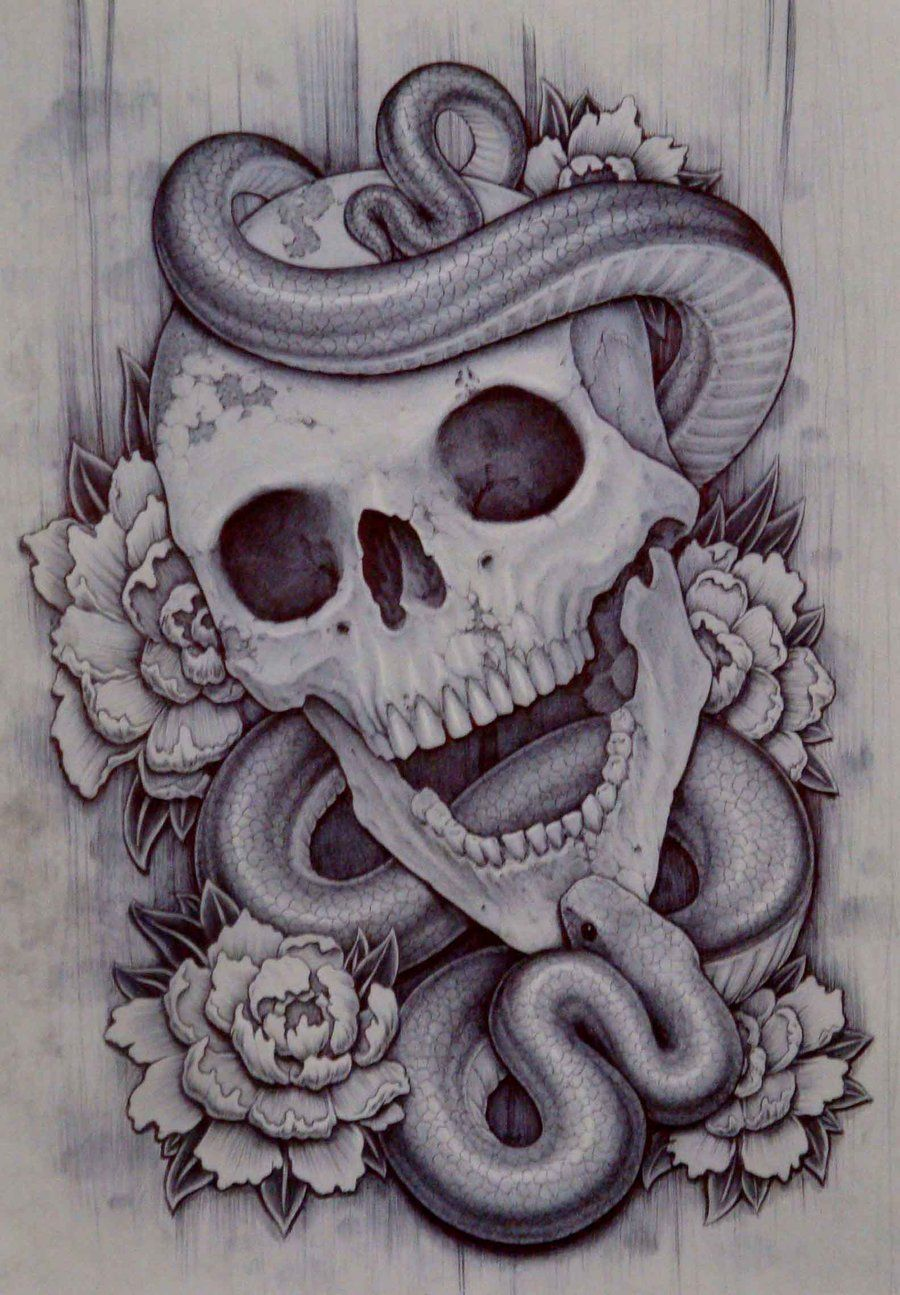 Drawings Of Skulls And Snakes - 365 funny pics | Art ...