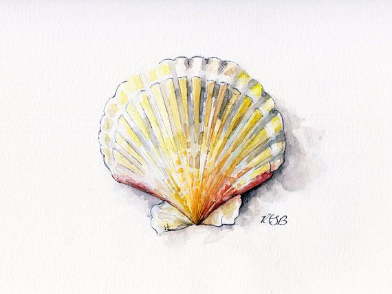 Seashell Painting 2 - Print from Original Watercolor ...