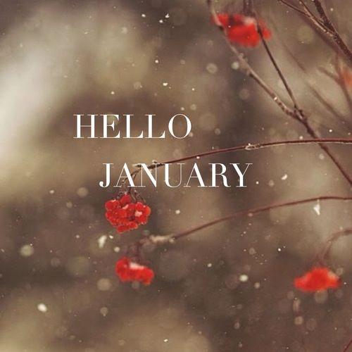 Αποτέλεσμα εικόνας για hello january tumblr