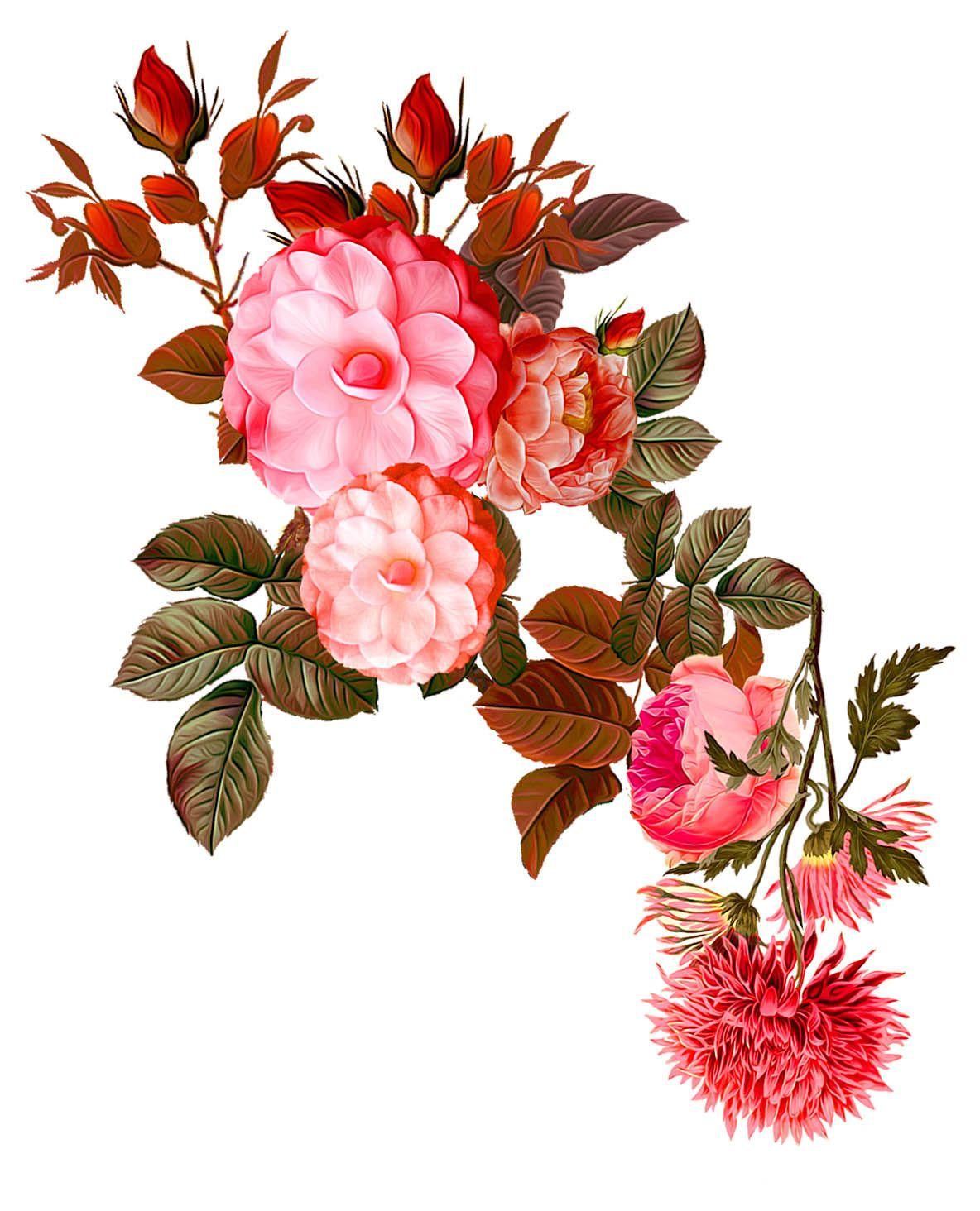 Pin by KAUSHIK HIRPARA on saved in 2019 Flower art