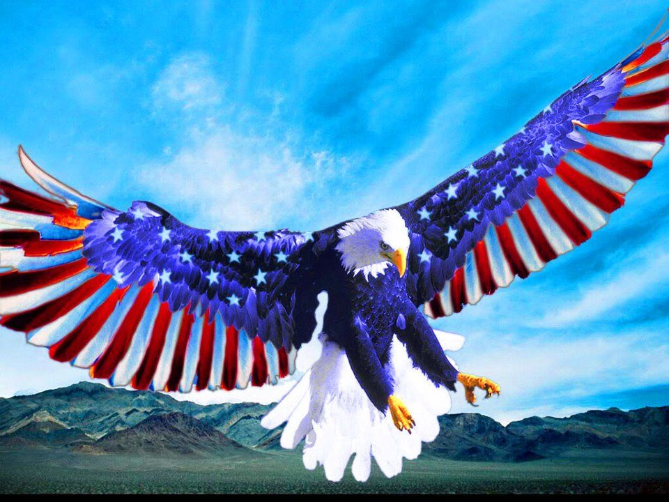 U.S.A•♥•.¸¸.•´¯`•.♥