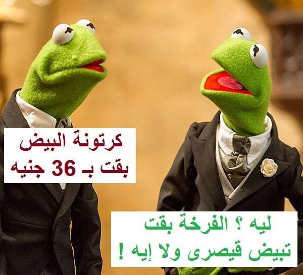 Pin By رغد المعمري On Things I Like Funny Photo Memes Funny Joke Quote Funny Picture Jokes