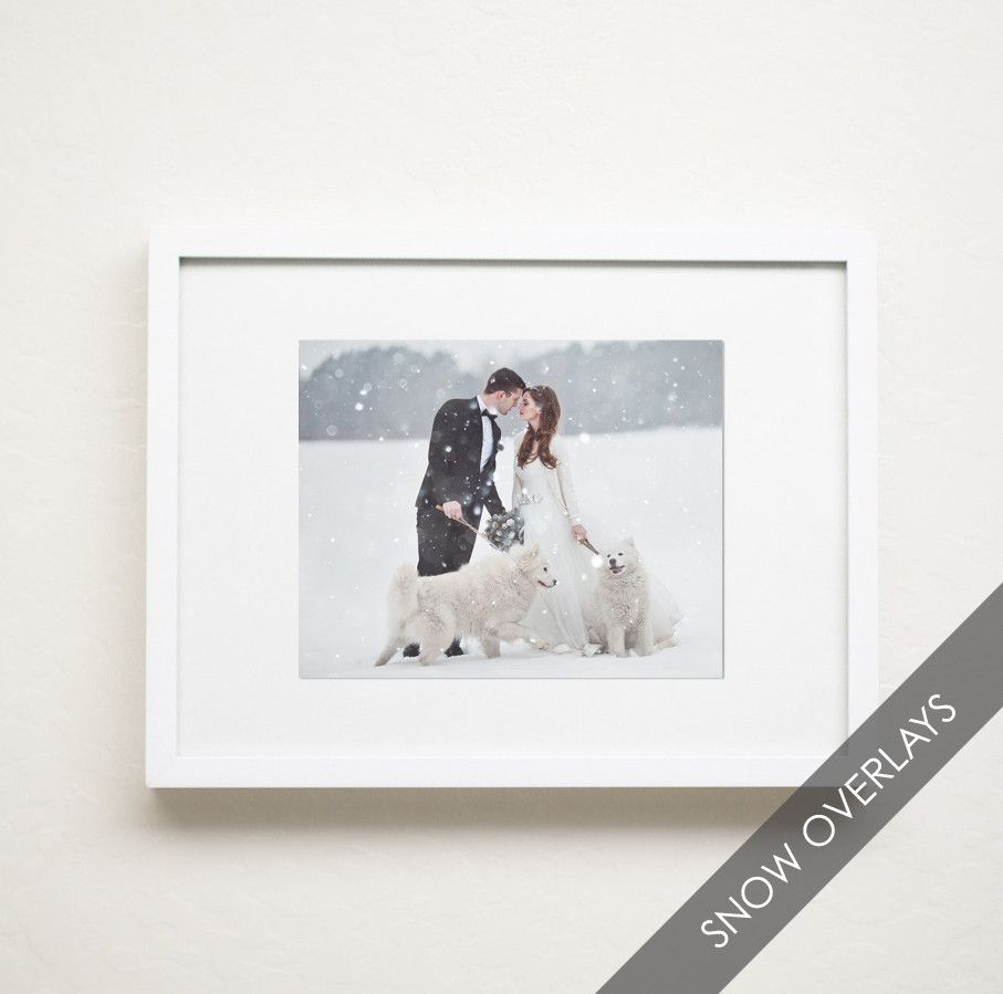 Holiday photos are so much fun and MBP is so excited about releasing a brand new collection just for the...