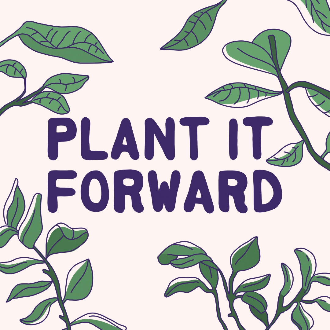 Photo of Plant it Forward: It All Adds Up