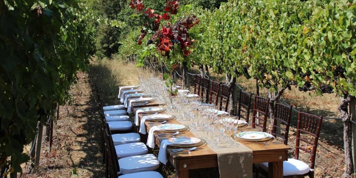 Byington Vineyard And Winery Weddings Price Out Compare Wedding Costs For Ceremony