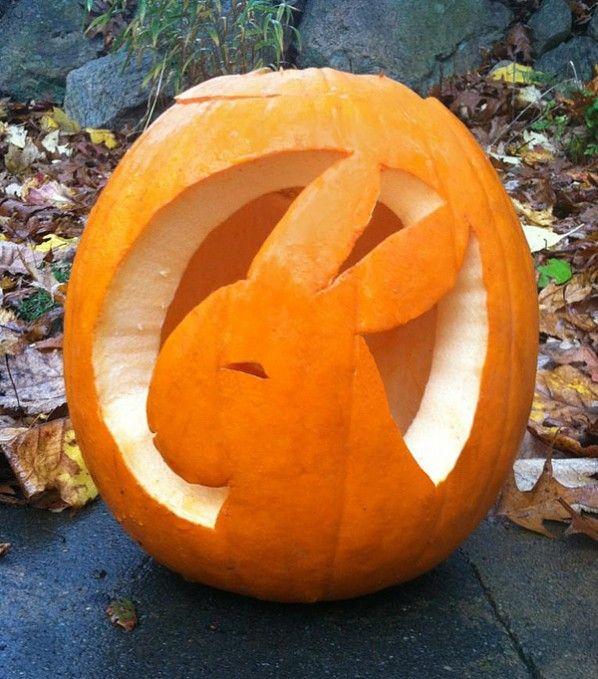 pumpkin template bunny  Pumpkin bunny! From MyHouseRabbit.com | favorite bunny ...