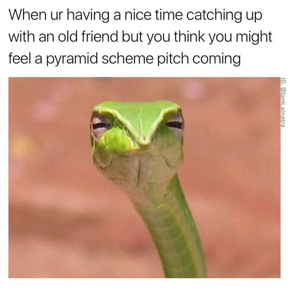 20 Hilarious Group Chat Memes You Ll Find Too Familiar Sayingimages Com Bones Funny Humor You Funny