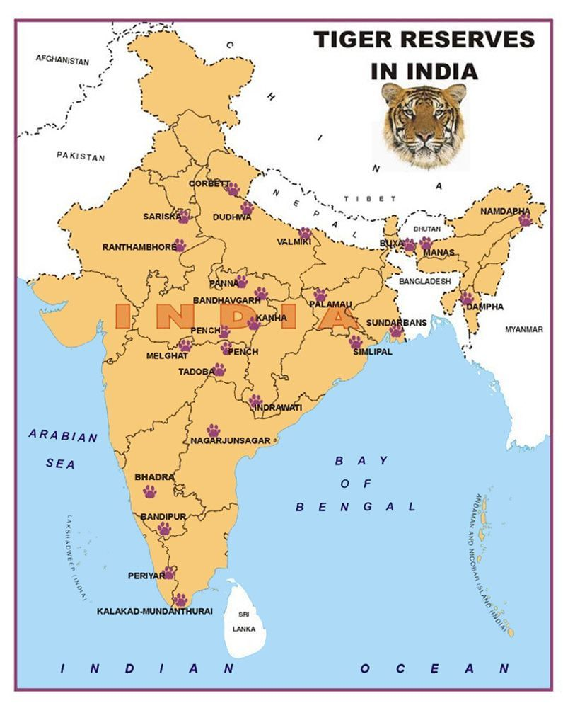 map of indian wildlife 10 Of The Best National Parks In India You Must Visit National map of indian wildlife