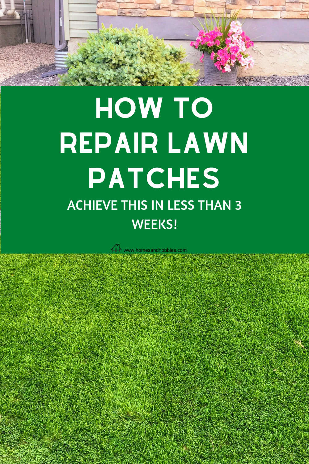Step By Step Diy For Repairing Patchy Lawn In 2020 Lawn Repair Lawn Lawn Care Tips