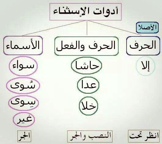 Pin By Jihen Makni Ep Elloumi On Learning Arabic Arabic Language Learn Arabic Language Learning Arabic