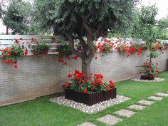 hermoso jardin | titiyo | Pinterest