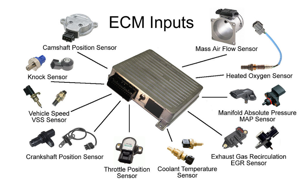 Ecm Inputs Download 4shared Jeremy Moore Car Mechanic Crankshaft Position Sensor Car Ecu