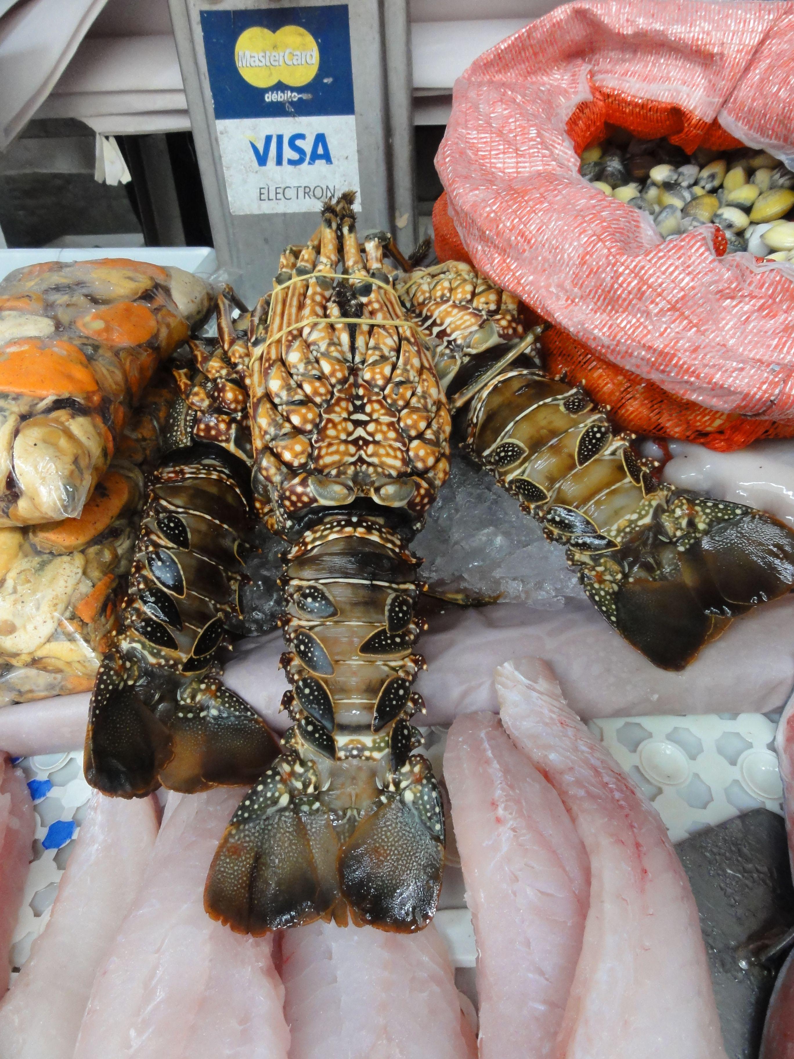 Seafood In Open Market Rio Brazil Brazil Rio De Janeiro