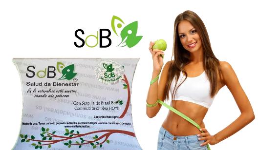 La Semilla de Brasil es un quemador de grasa 100% natural EXTREMADAMENTE EFECTIVO para bajar de peso de forma rápida, sin ningún tipo de dieta ni ejercicio. https://tusemilladebrasil.com/