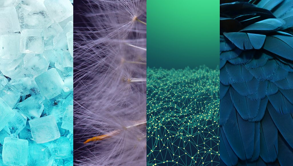 Shutterstockin datatiimi on yhdistänyt pikselitiedot kuvalataustietoihin ja kertoo nyt uusimmat väri- ja suunnittelutrendit.