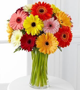 Colorful World Gerbera Daisy Bouquet Royal Fleur Florist Larkspur Ca 94939 Gerbera Daisy Bouquet Flower Arrangements Ftd Flowers
