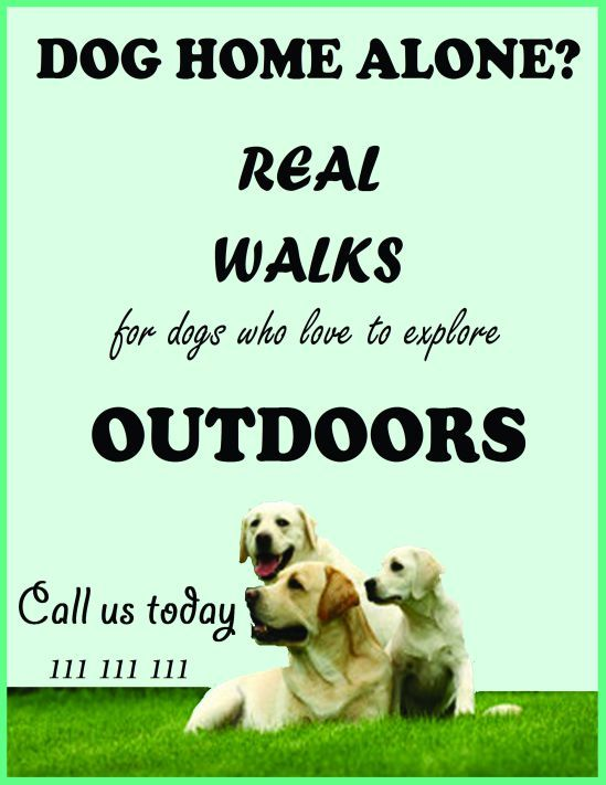 Dog walking flyers template Dog walking flyer certificate