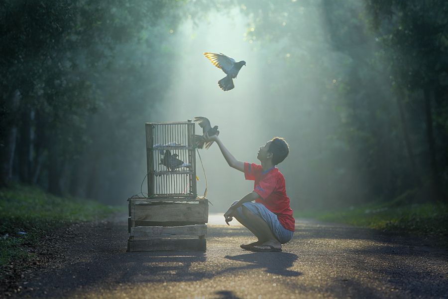 come to me... by taufik sudjatnika, via 500px